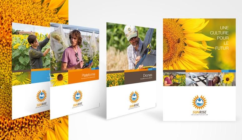Création : concept – campagne – édition – plaquette – lettrenews – e-mailing – bannière pour INRA – SUNRISE – Agence Linéal