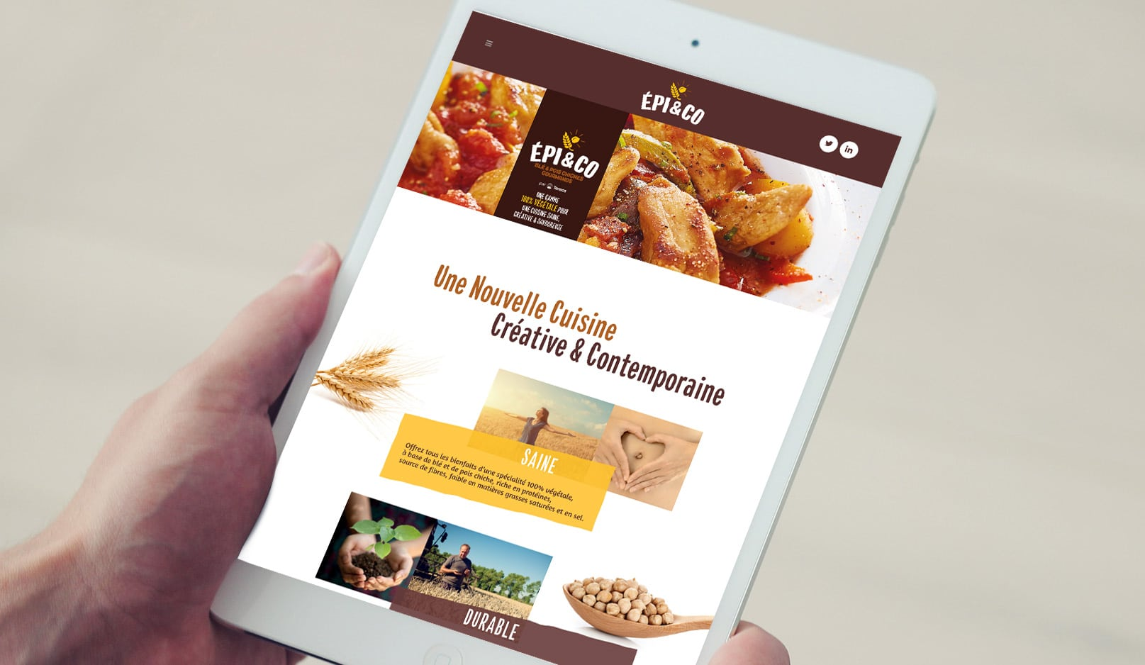 Création : site web pour EPI AND CO – Agence Linéal