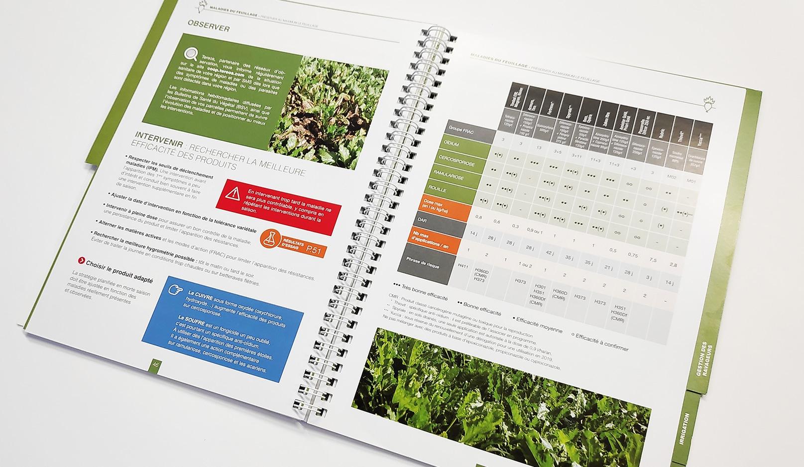 Création : guide pour TEREOS AGROBOOK – Agence Linéal
