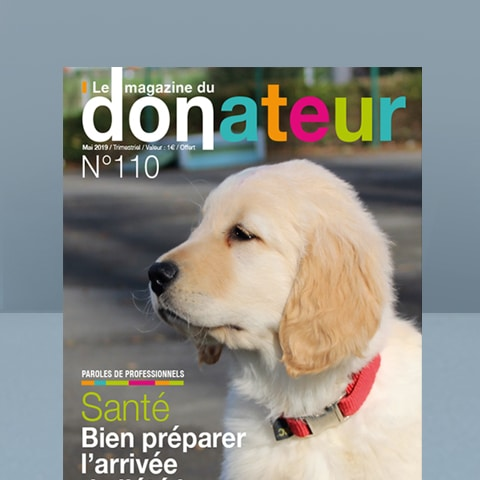CHIENS GUIDES AVEUGLES : Magazine du donateur - Agence Linéal